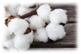 cotton-fibers-humidity-control