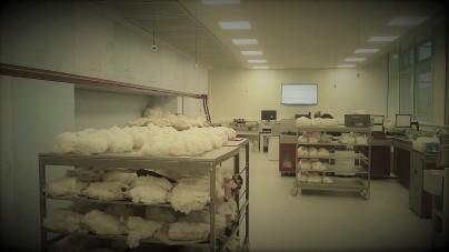 textile-fiber-laboratories-by-branca